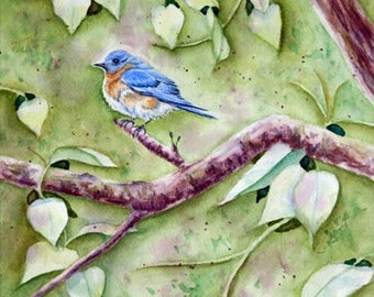 """Bluebird in Tree Original Watercolor Painting, Male Bluebird in Lilac Bush Bird Painting, 12"""" x 9"""" matted to 16"""" x 12"""""""