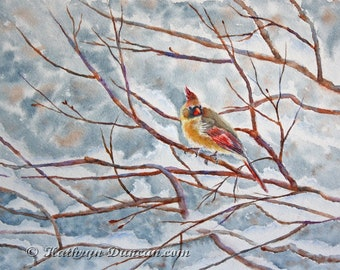 """Cardinal in Tree Original Watercolor Painting, Yellow Female Cardinal Winter Bird Painting, 9"""" x 12"""" matted to 12"""" x 16"""""""