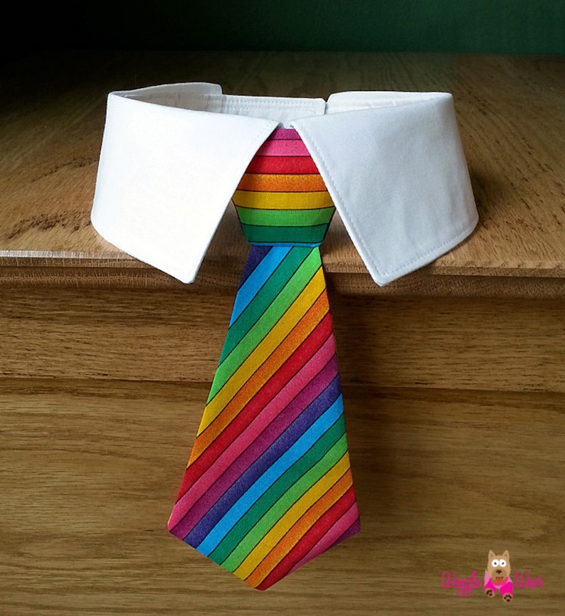 Rainbow Dog Tie and Shirt Collar Rainbow Stripes Dog Tie for image 0