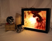 Dead Sea Coffee Table Lightbox