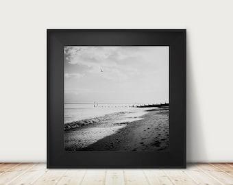 black and white beach photography, ocean print, English coastal photograph, Southwold print, bird photography, aerial beach print