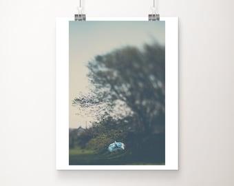 SALE blue boat photograph, tree print, Scotland photograph, travel photography, vertical nautical decor, 8x10 discounted art