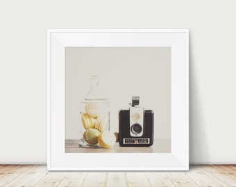 macaron photograph, vintage camera print, Kodak Brownie art, nursery decor