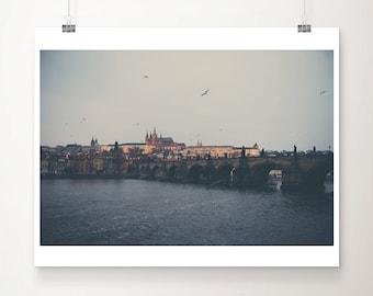 Prague photograph, Charles bridge photograph, travel print, bird photograph, Prague architecture print, Czech Republic print