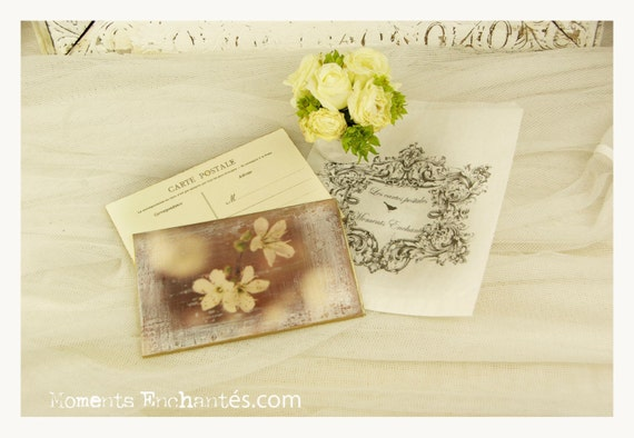 """Postcard France Dijon """"Le printemps"""" carterie artistique"""