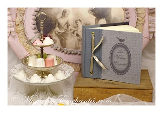 """Album photo Baptism new born """" L' oiseaux """" blue grey bird cage  french made mothers' Day"""