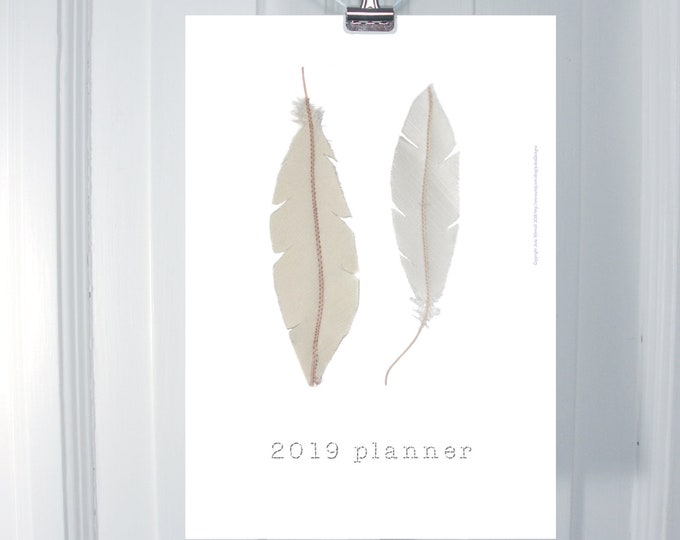2019 planner with feathers and monthly pages