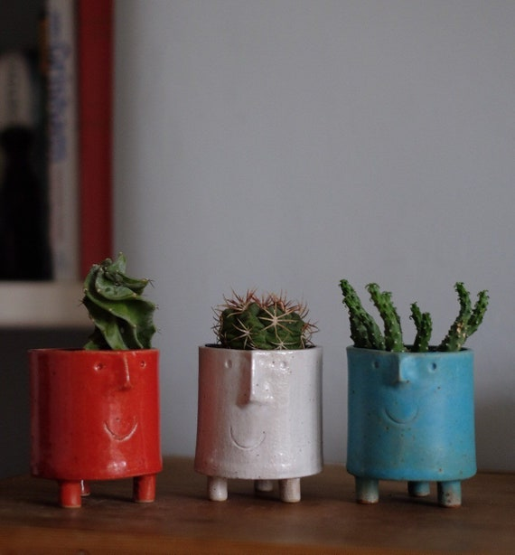 Small Funny Face Planter- Various Colours