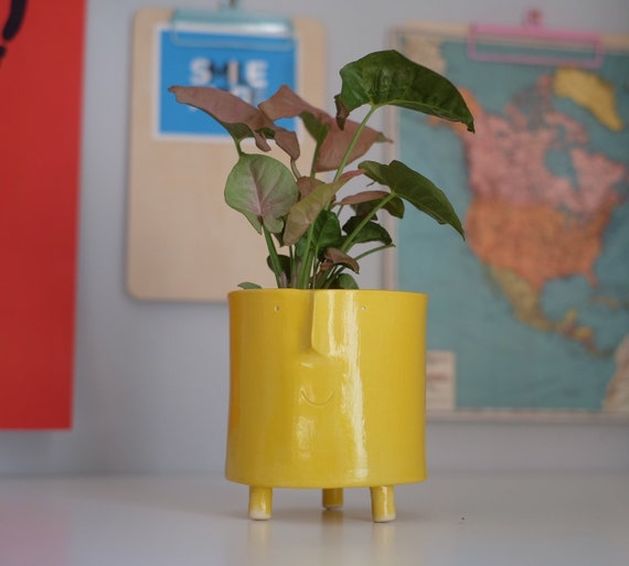 Large Funny Face Planter- various colours