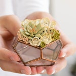 Glass ring box with succulents Only One