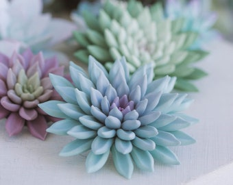 Succulent gift Green Succulent Brooch Pin Clothes Dress Accessory Decoration Plant Planter Brooch Pin Mother Birthday Wedding Gift