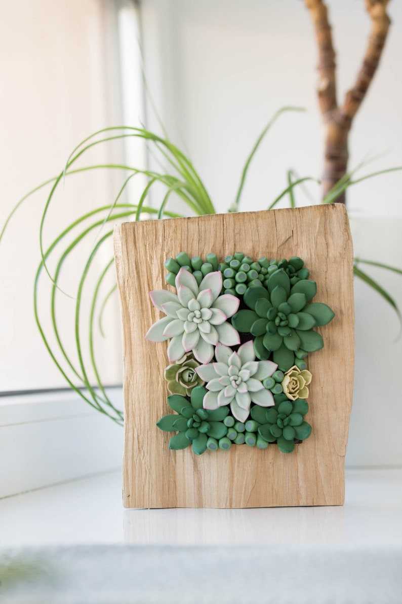 Unique Succulent decor image 0
