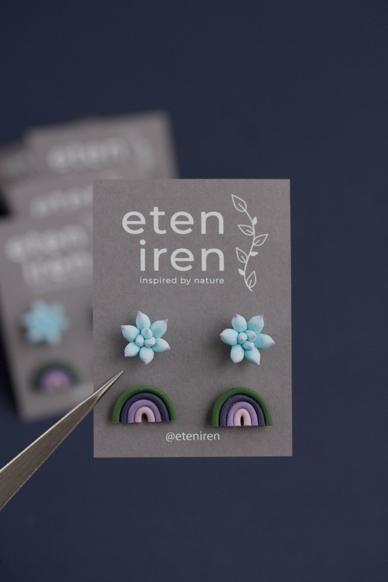Two Pair Set  Blue Pink Succulent Plant Modern rainbow earrings Multicolor Hypoallergenic Earrings Studs Succulent Stud Earrings