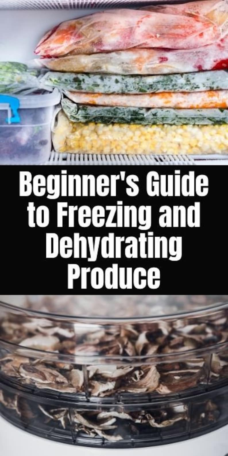 The Beginners Guide to Preserving the Garden Harvest without image 1