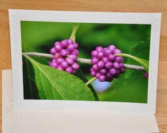 Photo Greeting Card - Purple Berries