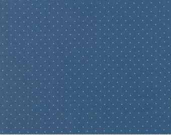Play All Day Blue 21098 141 by American Jane for moda fabrics