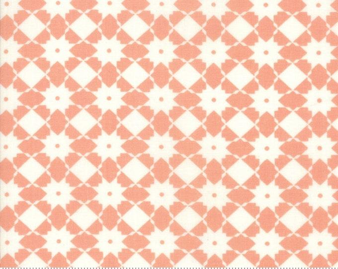 Garden Variety Apricot 5072 18 by Lella Boutique for Moda Fabrics