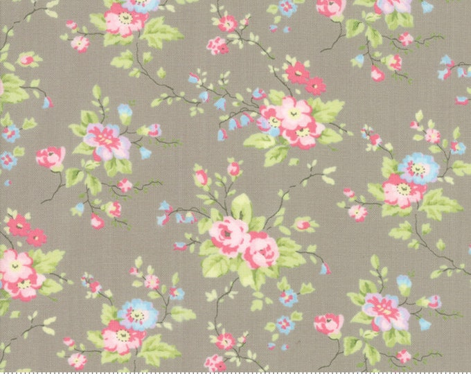 Finnegan 18680-16 Pebble by Brenda Riddle Designs for Moda Fabrics