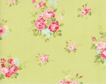 Caroline willow 18650 15 by Brenda Riddle Designs for Moda Fabrics