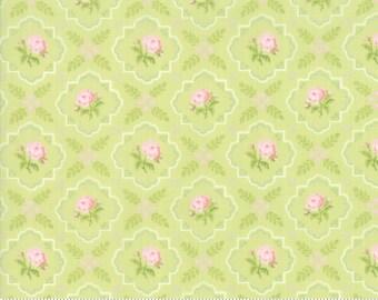 Finnegan 18682-13 Sprout by Brenda Riddle Designs for Moda Fabrics