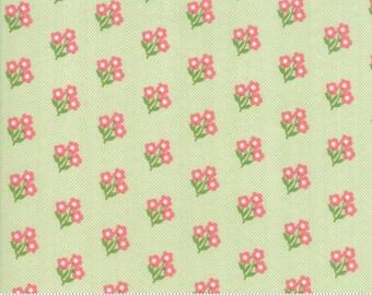 Lollipop Garden Apple 5082 11 by Lella Boutique for Moda Fabrics