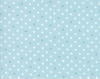 Bramble Cottage 18695-13 Mist by Brenda Riddle Designs for Moda Fabrics