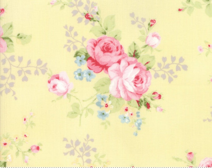 Amberley 18670 13 sunshine by Brenda Riddle Designs for Moda Fabrics