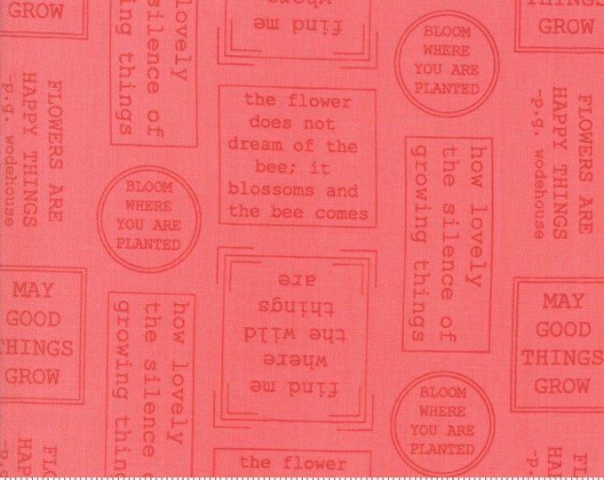 Lollipop Garden Raspberry 5081 13 by Lella Boutique for Moda Fabrics