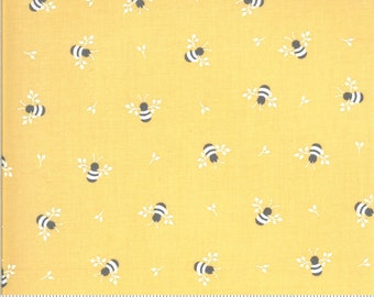 Spring Brook Sunny 29112 14 by Corey Yoder of Coriander Quilts for Moda Fabrics