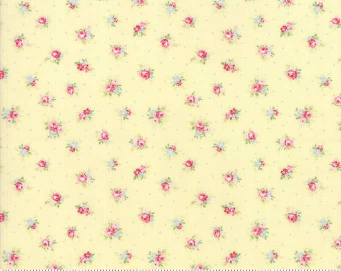 Amberley 18671 14 sunshine by Brenda Riddle Designs for Moda Fabrics
