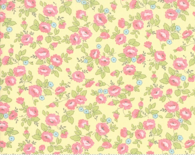 Finnegan 18681-14 Sunny by Brenda Riddle Designs for Moda Fabrics