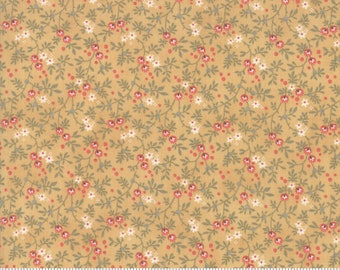 Daybreak Glow 44246 13 by 3 Sisters for Moda Fabrics