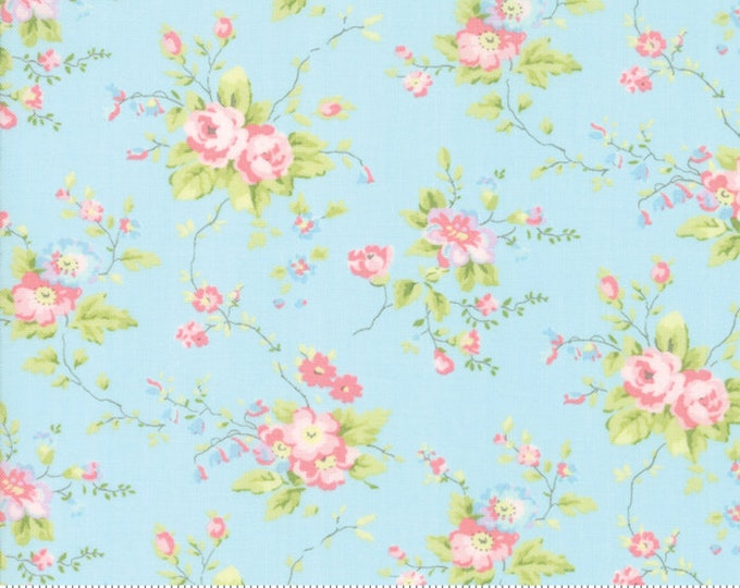 Finnegan 18680-12 Sky by Brenda Riddle Designs for Moda Fabrics