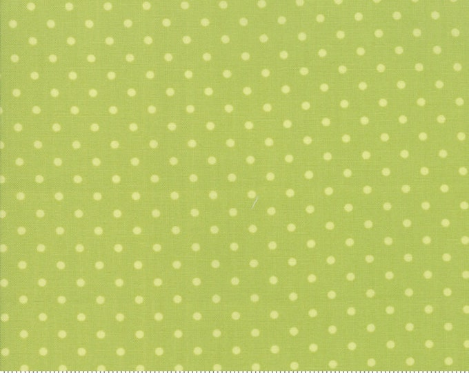 Amberley 18675 14 sprout dot by Brenda Riddle Designs for Moda Fabrics