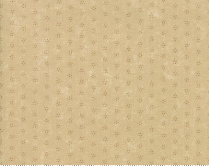 Nature's Glory Tonal Tan 9587 21 by Kansas Troubles for moda fabrics