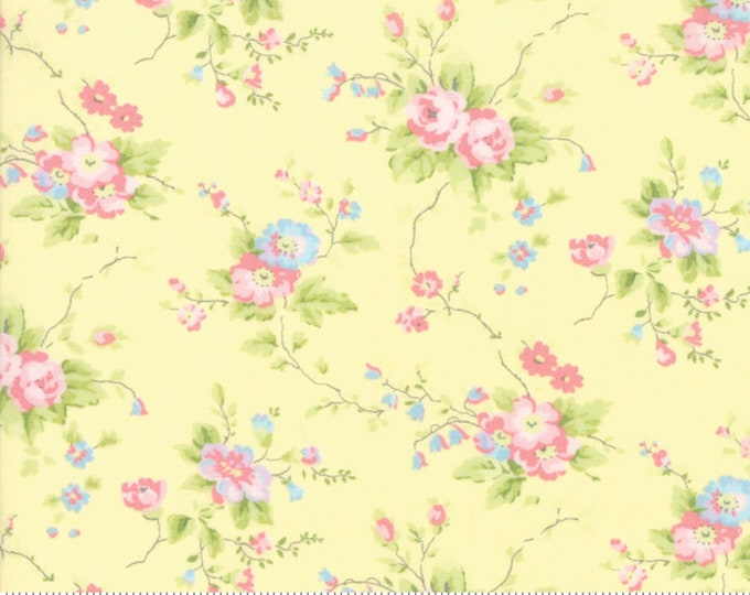 Finnegan 18680-14 Sunny by Brenda Riddle Designs for Moda Fabrics