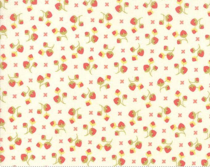 Scarlet and Sage Ivory 20365 15 by Joanna Figueroa of Fig Tree Quilts for moda fabrics