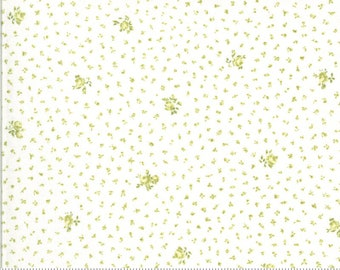 Dover Little Floral Willow 18702 14 by Brenda Riddle for Moda Fabrics