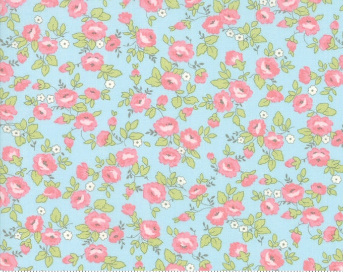 Finnegan 18681-12 Sky by Brenda Riddle Designs for Moda Fabrics