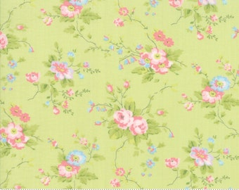 Finnegan 18680-13 Sprout by Brenda Riddle Designs for Moda Fabrics
