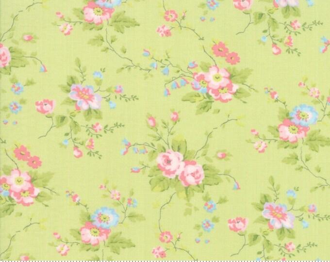 Finnegan 18680-13 Sprout by Brenda Riddle Designs for Moda Fabrics