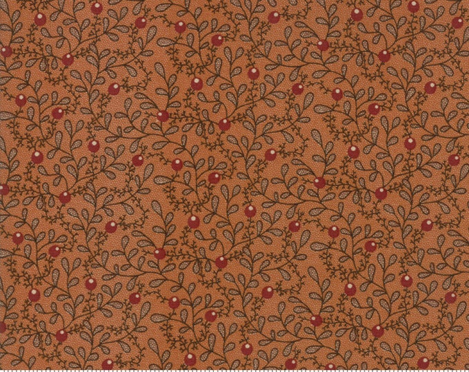 Spice It Up Rust 38050 14 by Jo Morton for Moda Fabrics