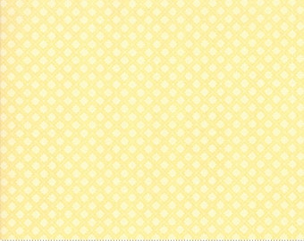 Finnegan 18684-19 Sunny by Brenda Riddle Designs for Moda Fabrics