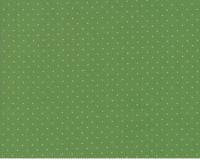 Play All Day Green 21098 138 by American Jane for moda fabrics
