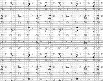 Hush Hush Measure Twice by J. Wecker Frisch C11172-MEASURE for Riley Blake Designs