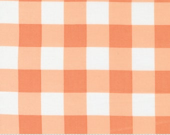 Cozy Up Cinnamon 29125 12 by Corey Yoder of Coriander Quilts for Moda Fabrics
