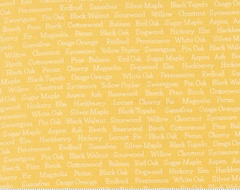Cozy Up Sunshine 29124 24 by Corey Yoder of Coriander Quilts for Moda Fabrics