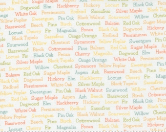 Cozy Up Cloud 29124 11 by Corey Yoder of Coriander Quilts for Moda Fabrics