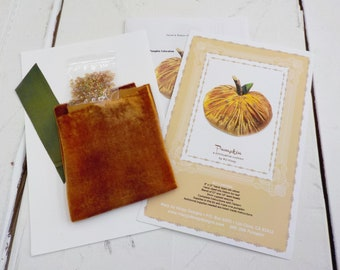 Pumpkin, a diminutive cushion by MJ Hiney...the Ribbon Muse...complete fabric and ribbon kit with instructions, pumpkin velvet