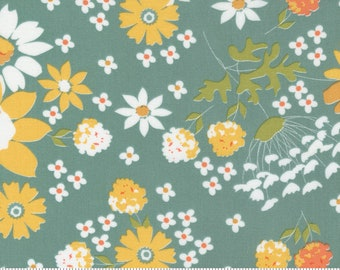 Cozy Up Blue Skies 29120 17 by Corey Yoder of Coriander Quilts for Moda Fabrics